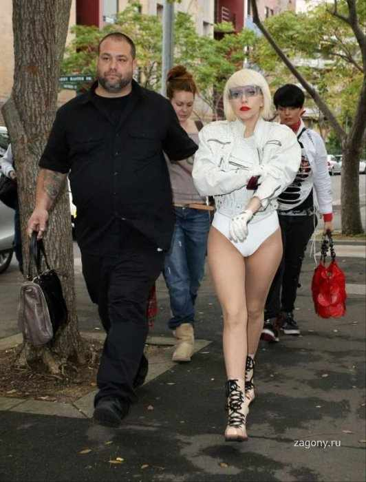 Lady Gaga (18 фото)