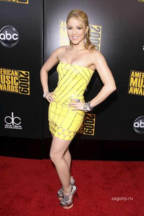 Shakira (15 фото)
