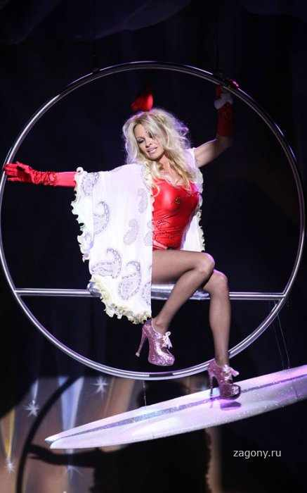Pamela Anderson (14 фото)