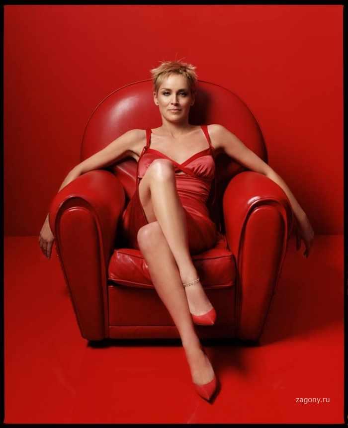 Sharon Stone (15 фото)